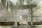 Oakley House Garden